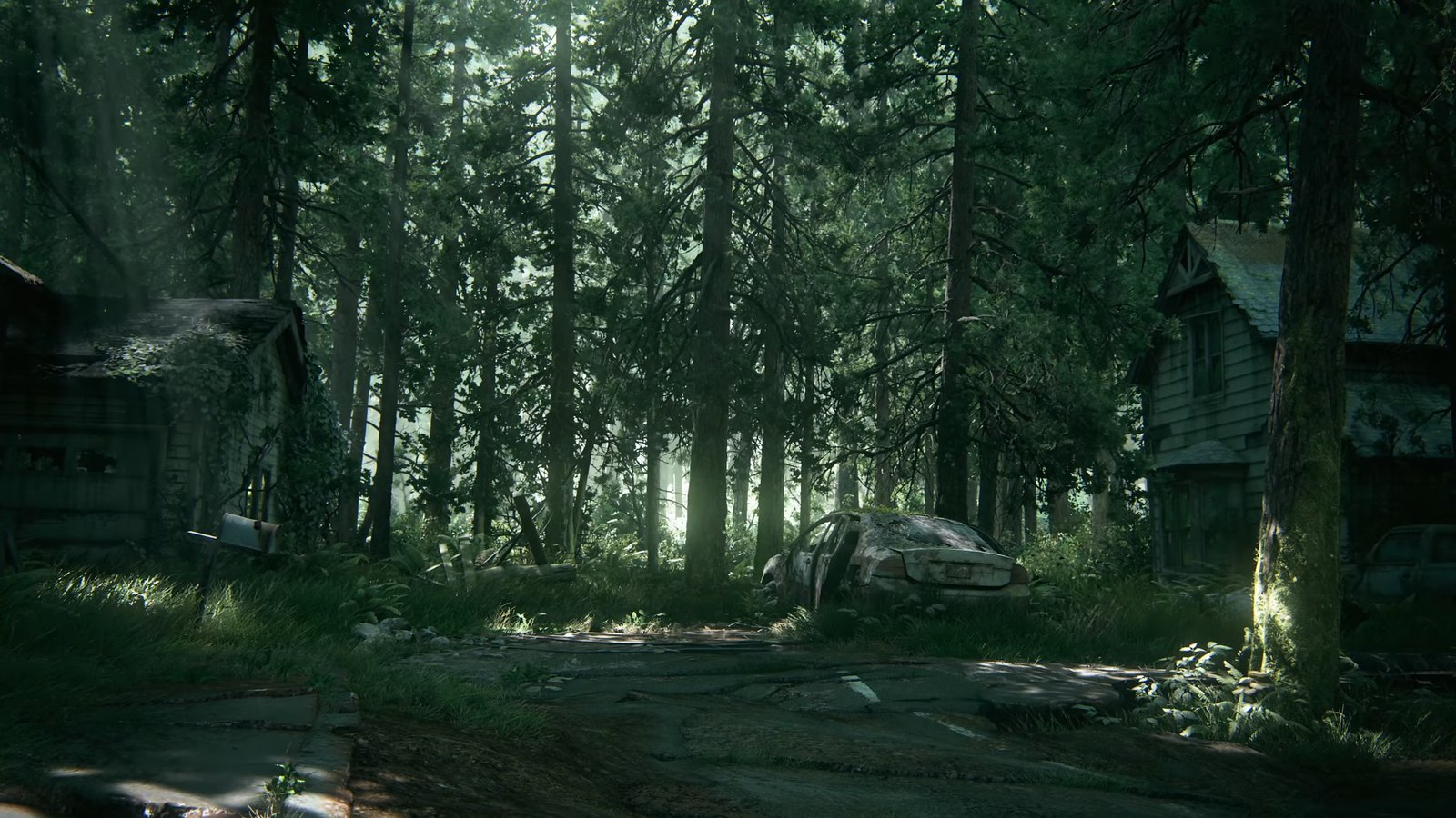 Video Conference Backgrounds - The Last of Us