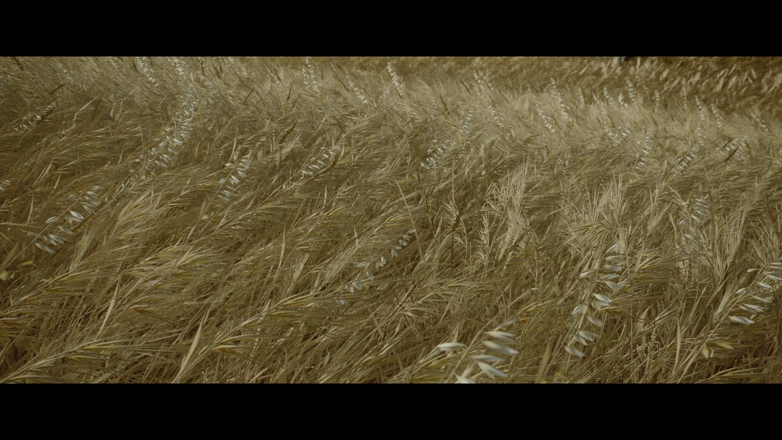 The Last of Us™ Part II_John Sweeney_20200627183021